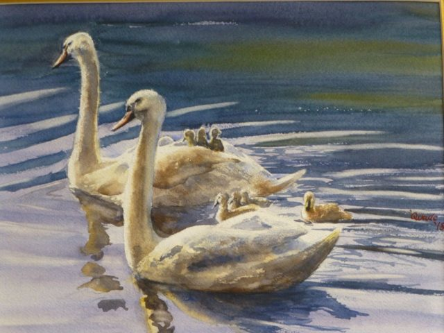 The Family's Day Out two swans and small cygnets gliding through the water - Watercolour Painting