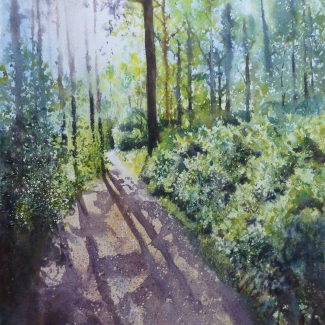 Sunshine in Ainsdale Woods Dappled sunlight and shadows on the footpath between the conifers - Watercolour Painting