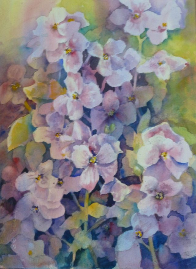 Cascading Aubretia - Floral Watercolour Painting
