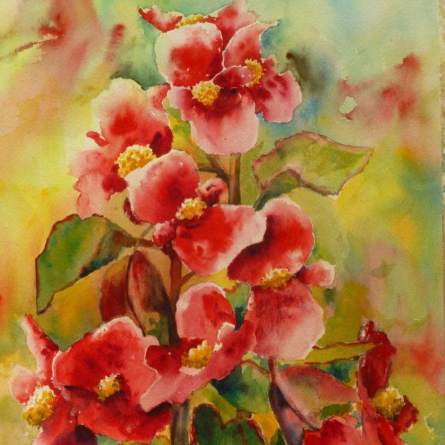 Dancing Begonias flowers -Floral Watercolour Paintings