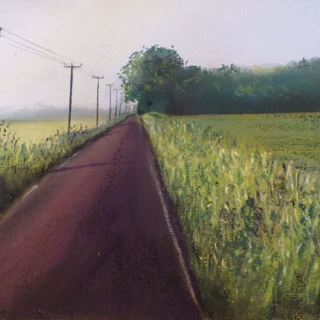 Segars Lane, Towards Halsall. View of the lane, wild flowers and tilted telegraph poles- Pastel Painting