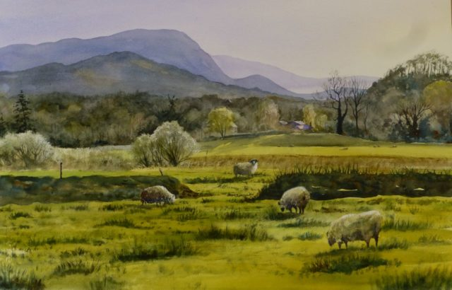 Ambleside in Spring with grazing Lake District sheep under the mountains - Watercolour Painting