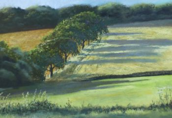 Parbold Hill, trees and evening shadows. Pastel painting
