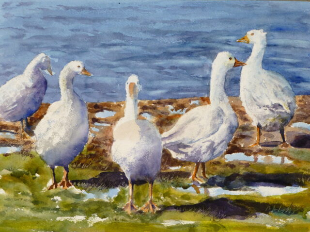 A watercolour painting of five white geese by the river, wandering over the muddy banks in different directions