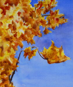 A watercolour painting of an autumnal scene of a tree with gold and orange leaves set against a rich blue sky and a falling leaf in the foreground